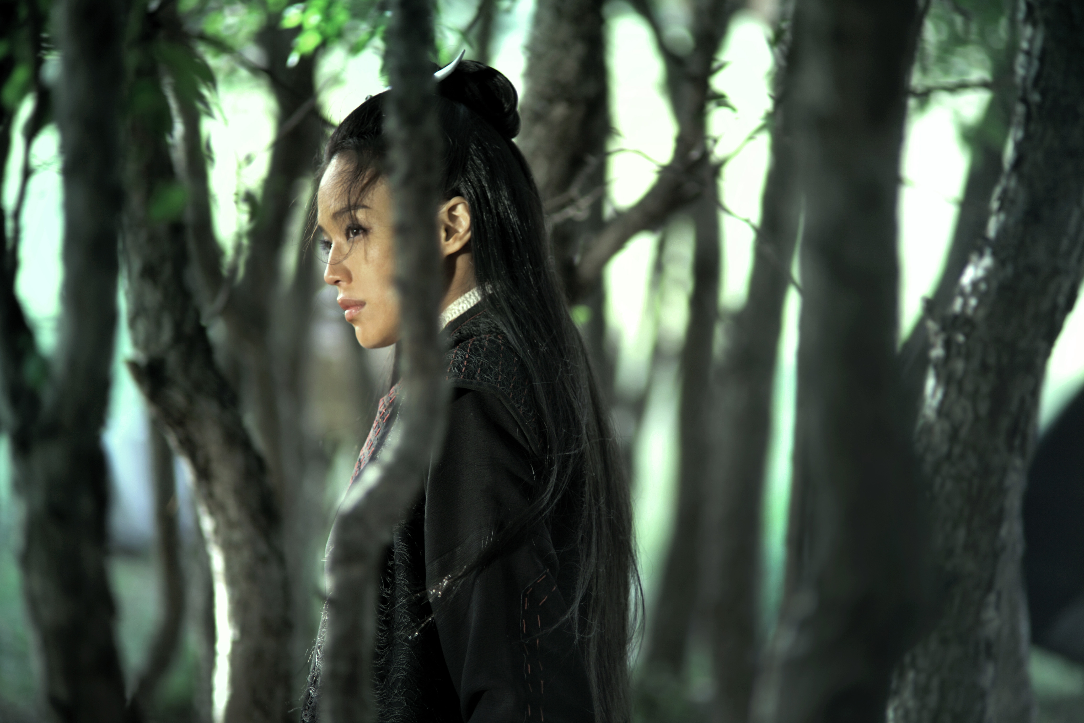 Still of Qi Shu in Nie yin niang (2015)