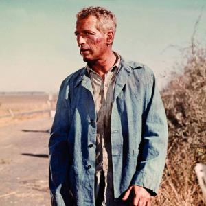 Still of Paul Newman in Cool Hand Luke 1967