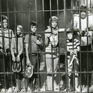 Eve Plumb, Florence Henderson, Susan Olsen, Robert Reed, Ann B. Davis, Christopher Knight, Mike Lookinland, Maureen McCormick, Barry Williams and Peter Christopher at event of The Brady Bunch (1969)