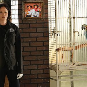Still of Jorja Fox in CSI kriminalistai (2000)