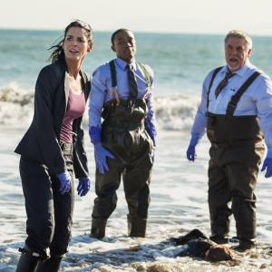 Angie Harmon, Bruce McGill, Lee Thompson Young