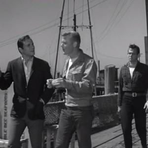 David Janssen, George Maharis, Martin Milner