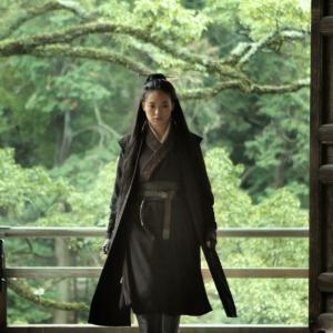 Qi Shu in Nie yin niang (2015)