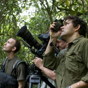 Still of Bill Wallauer and Mark Linfield in Chimpanzee 2012