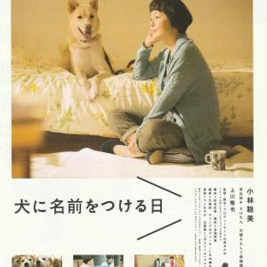 it is a akane yamadas new film title the name of the dog