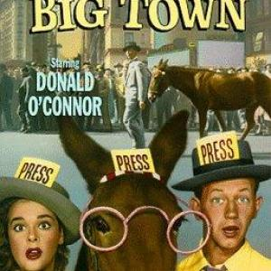 Yvette Duguay Donald OConnor and Francis the Talking Mule in Francis Covers the Big Town 1953