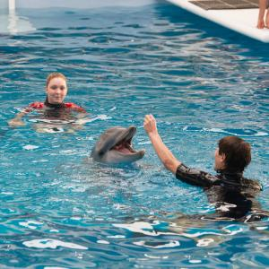 Still of Nathan Gamble and Cozi Zuehlsdorff in Dolphin Tale 2 (2014)