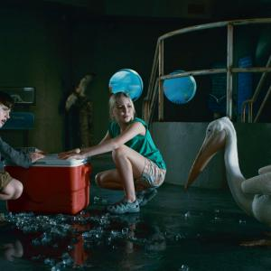 Still of Nathan Gamble and Cozi Zuehlsdorff in Dolphin Tale (2011)