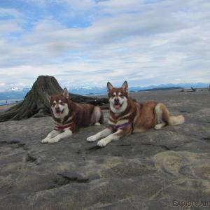 Skadi & Freya with Russell Josh Peterson ~ Eagle Beach Juneau Alaska Thank you for your Kindness and Support.