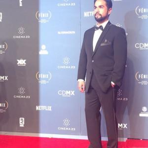 Fénix Awards red carpet (2015)